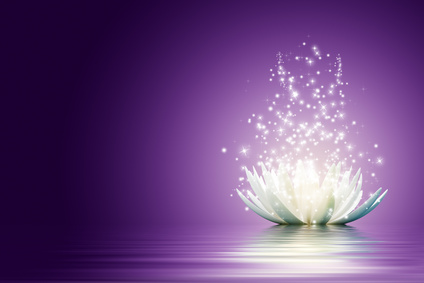 Fleur lotus meditation