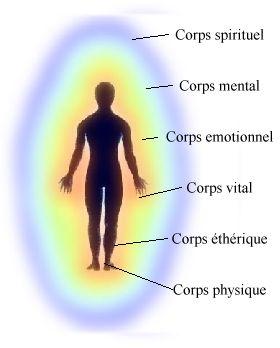 Différents corps énergétiques