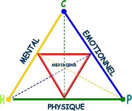 Triangle emotion mental physique
